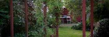 Året i vår trädgård