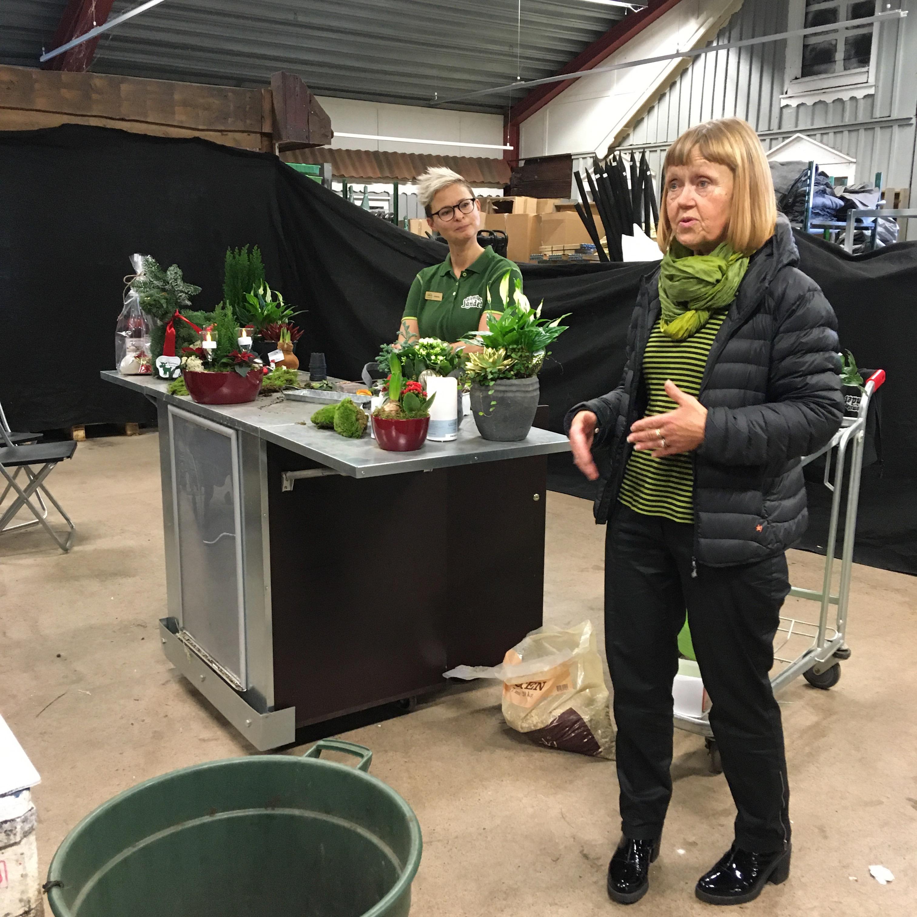 JULGRUPPER PÅ BLOMSTERLANDET 2019